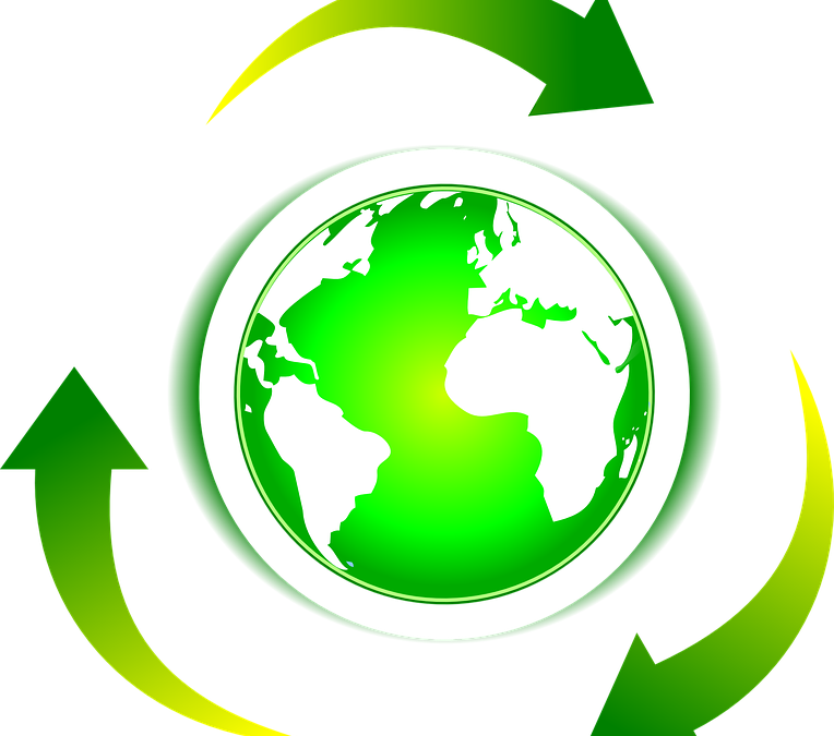 Sustainability and Competitivness: how important is environmental impact in global market?