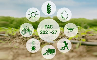 PAC post 2020: how will change EU agriculture?